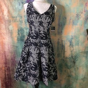 NWT📌📌  Taylor work-to-weekend ready dress 📌📌